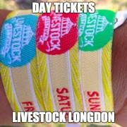 Day Tickets