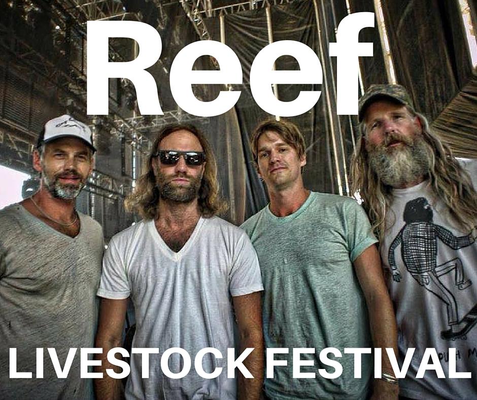 Reef (1)